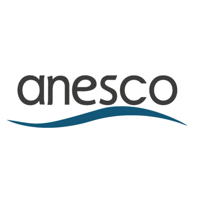 logo anesco new